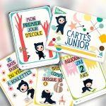 cartes junior milestone cards
