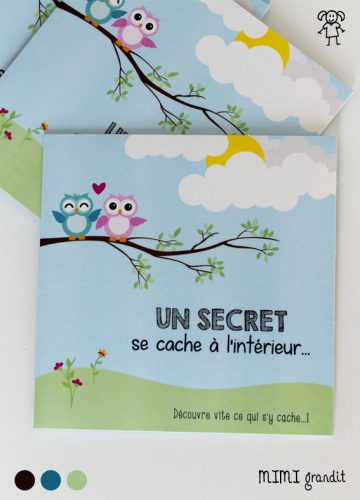 pochette carton single hibou message