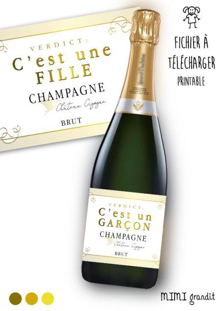 champagne-annonce-sexe-bebe-a-imprimer