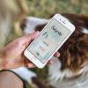 carte-a-gratter-personnalisable-numérique-virtuelle-oiseaux 2