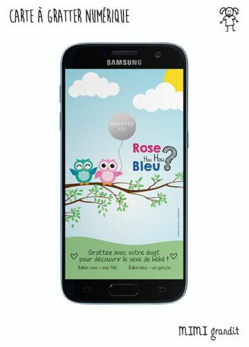 annonce-fille-ou-garçon-sur-telephone-sms-hiboux-rose-bleu
